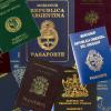 Защо международните паспорти в света са само 4 цвята