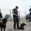 Европейската агенция за гранична и брегова охрана се включва в действията на българско-турската граница срещу нелегалния трафик на хора