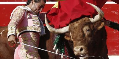 Бик уби световно известен испански тореадор